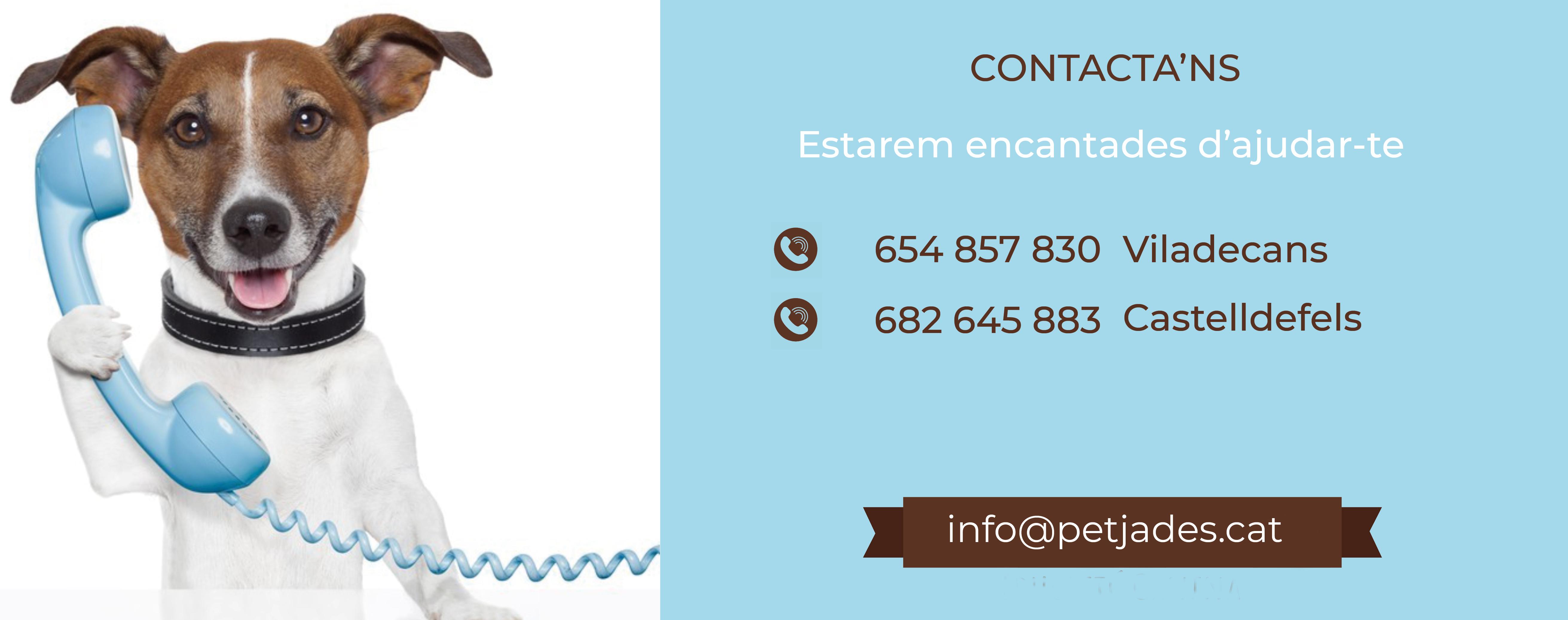 Contacta'ns